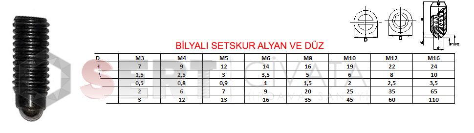 Bilyali-Setskur-Alyan-Ve-Düz-Sert-Civata-Basaksehir-ikitelli-İmalat-toptan-Celik-Metal-Kaliteli-Perakende-Ucuz-Istanbul-Turkiye