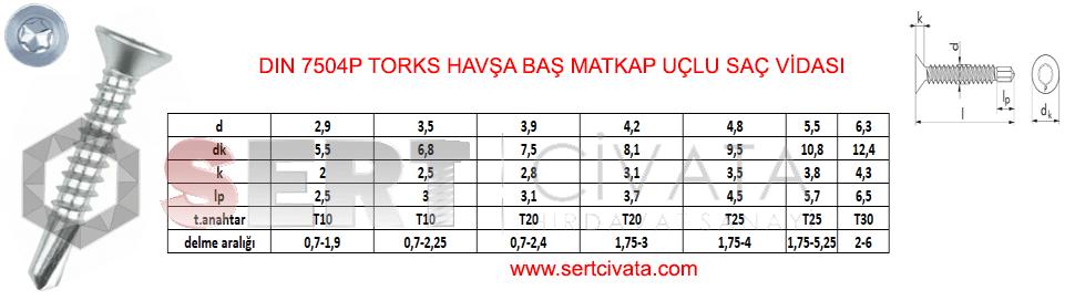 din-7504p-iso-15480-Torks-Torx-Havsa-Bas-Matkap-Uclu-Sac-Vidasi-Sert-Civata-Basaksehir-ikitelli-İmalat-toptan-Celik-Metal-Kaliteli-Perakende-Ucuz-Istanbul-Turkiye