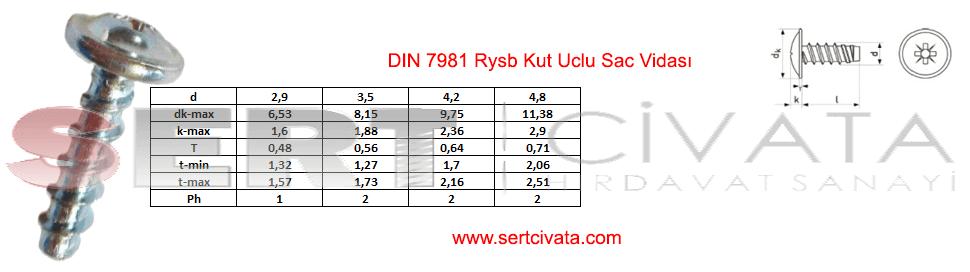 din-7981-rysb-Kut-Uclu-Sac-Vidasi-sapkali-Sac-Vidasi-Sert-Civata-Basaksehir-ikitelli-İmalat-toptan-Celik-Metal-Kaliteli-Perakende-Ucuz-Istanbul-Turkiye