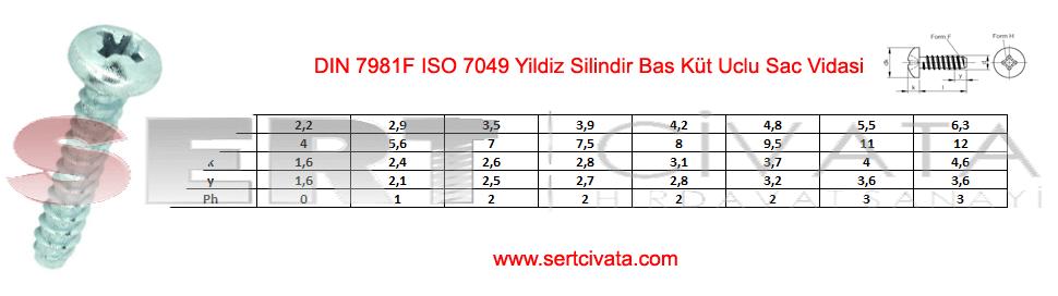 din-7981f-ıso-7049-Yildiz-Silindir-Bas-Kut-Uclu-Sac-Vidasi-Sert-Civata-Basaksehir-ikitelli-İmalat-toptan-Celik-Metal-Kaliteli-Perakende-Ucuz-Istanbul-Turkiye